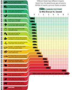 Veganismo, gases invernadero, contaminación
