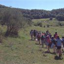 Los scouts: un movimiento juvenil diferente