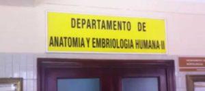 Cadáveres acumulados en la UCM